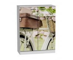 zapatero 2 puertas bicicleta antigua