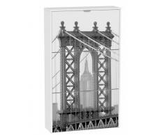 Zapatero 3 puertas Puente de Brooklyn
