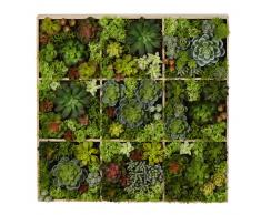 Decoración de pared con plantas artificiales 17x70