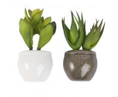 2 imanes de plantas suculentas artificiales