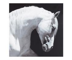 Lienzo caballo blanco y negro 100 x 100cm MAGELLAN
