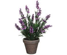 Unbekannt Planta Artificial de diseño de Flores de Lavanda, Colour Morado, con diseño de Maceta de Terracota-de Coloures, con Altura de 33 cm