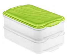 Rotho 1701905503 – Recipiente hermético Food Center Rondo, Caja Embutidos 2 Piezas, Volumen 2 x 1,35 L, plástico, Transparente/Verde, 24 x 16 x 11 cm