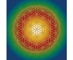 Berk PO-005 Spirituelle Kunst - Póster de la flor de la vida, multicolor