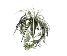MICA Decorations 918252 chlo rophytum l45d45 verde planta artificial en maceta Stan D11.5 gris, poliéster, 45 x 45 x 45 cm