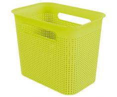 Rotho Caja de Almacenamiento de 7 l, Plástico (PP), Verde Lima, 7 Liter (26,2 x 18 x 21,1 cm)