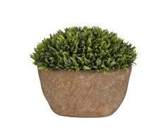 Aufora - Planta Artificial en Maceta rústica, Verde, 18 cm