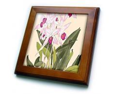 3dRose - Azulejos de orquídeas con Marco de Madera y cerámica, 8 x 8 cm, Color Rosa Claro y Oscuro