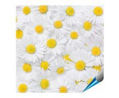 Adhesivo para azulejos para baño y cocina – 15 x 15 cm – Diseño Margaritas Flor – Baldosas de 10 pegatinas para pared azulejos