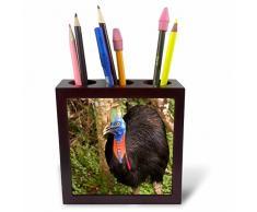 3dRose ph 86163_ 1Azulejos de cerámica, Manualidades, Cuenca, Ecuador SA07jme0463John & Lisa Merrill Azulejos Soporte para bolígrafos, 5