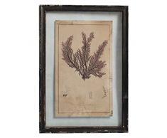 Better & Best Cuadro de Pared con Grabado de árbol de mar 8, Fondo de Cristal, Marco Negro, 40 x 58 x 1,8 cm, Madera policromada, 40.00x1.80x58.00 cm