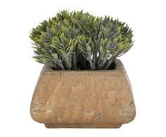 Aufora - Planta Artificial en Maceta Cuadrada rústica, Verde, 12 cm