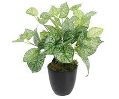Leaf Planta de caladio Artificial con Maceta de 40 cm