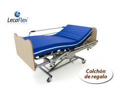 cama articulada con carro elevador, colchón viscoelastico, juego de barandillas y de cabezales en madera
