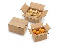 Caja para expedición de frutas y verduras 31x22,5x21,5 cm