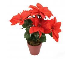 Eminza Composición floral de Navidad Estrella de Belén XL