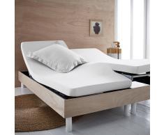 SCENARIO Sábana bajera de punto 100% algodón orgánico para cama articulada blanco