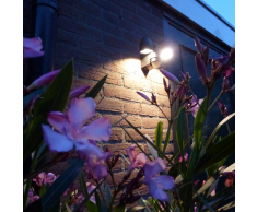 Luxform Lámpara de pared para jardín con sensor PIR Umbriel 230 V