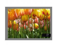 AG Design Papel de pared fotográfico Tulip Big FTS0045
