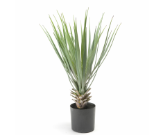 Emerald Planta artificial yucca rostrata 50 cm verde 11.634C