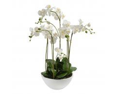 Emerald Orquídea artificial blanca 80 cm 20.335C