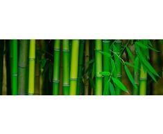 Cabecero Cama PVC Impresión Digital Bambú Multicolor 100 x 60 cm | Disponible en Varias Medidas | Cabecero Ligero, Elegante, Resistente y Económico