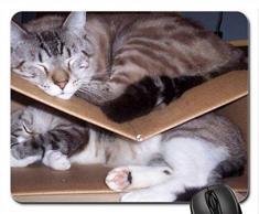 Litera Mouse Pad, Mousepad (Cats Mouse Pad)