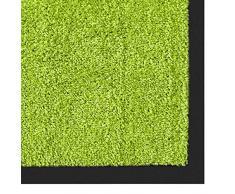 casa pura Alfombra Puerta Entrada Casa - Felpudo Entrada Casa | Rhine | Exterior & Interior | Atrapa la Suciedad | Muchos Colores y tamaños (Verde Claro, 40x60 cm)