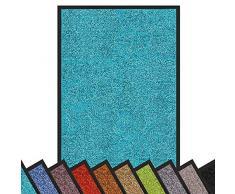 casa pura Alfombra Puerta Entrada Casa - Felpudo Entrada Casa | Rhine | Exterior & Interior | Atrapa la Suciedad | Muchos Colores y tamaños (Turquesa, 60x90 cm)