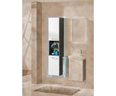 Armario de pared de alta calidad y de colour (en la parte delantera) Vadea: de colour blanco, el colour (cuerpo): de madera de pino-de colour gris oscuro