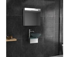 Muebles de cristal/vidrio opalino peluquería infantil/diseño lavabo/alpen Berger/Serie 40/invitados-WC/baño/cuarto de baño/fuente de cristal/accesorio cáscara/mueble lavabo cristal