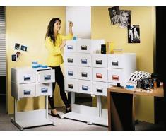 Rexel 3312080 caja y organizador para almacenaje de archivos - Organizador de almacenaje