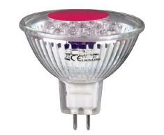Xavax 112049 - Lámpara LED (Rojo, 12V, 1 Hz, 4,8 cm, 30g)