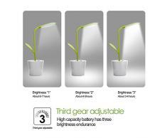 iEGrow lámpara De Cabecera, lámpara De Mesa Regulable De la lámpara De Escritorio De la lámpara De la Noche De Dimmable LED, 1 W 3 Niveles de Brillo Regulable, Sensible Al Tacto, Flexible luz de lectura (Verde)