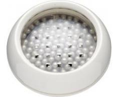 Kitchen Craft Bar Craft Connoisseur - Bolas limpiadoras para decantador de cristal