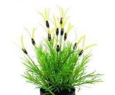 Euro Palms 82505639 - Planta artificial (40 cm)