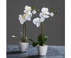 Orquídea Phalaenopsis en una olla blanco 28 cm de la flor artificial por DPI