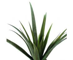 Europalms - Planta de aloe vera artificial (79 cm), multicolor