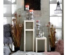 Mesa auxiliar de madera shabby taburete Vela soporte Estantería Juego mesa Flores antiguo color blanco