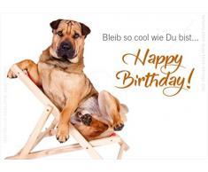 """'3 pieza doble tarjeta con KUVERT, tarjeta, tarjeta de felicitación, cumpleaños tarjeta Cooler perro en tumbona, bleib So Cool como Du Bist... Happy Birthday. """""""