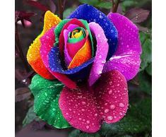Rosepoem 600pcs coloridas semillas de flores del arco iris plantas de jardín casero amante único multicolor