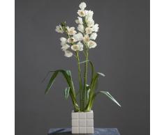 De la orquídea Cymbidium en el recipiente de colour crema 90 cm Arte de la flor de ppp
