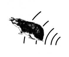 Blanko LS-997M - Ahuyentador de roedores