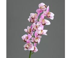 """Orquídea-Cymbidium con flores y texto{12} """"fresh"""" Lavender 98 cm de flor de ppp"""