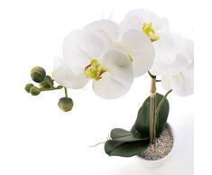 Orquídea phalaenopsis CANDIDA, 2 ramas, blanco, en maceta, 65 cm - Planta decorativa / Flor artificial - artplants