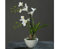 Orquídea en un tazón de fuente blanco 40 cm de la flor artificial por DPI