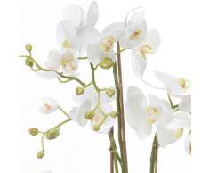 Orquídea Phalaenopsis artificial PABLA en tierra, blanco-amarillo, 80 cm - Planta decorativa / Flores sintéticas - artplants