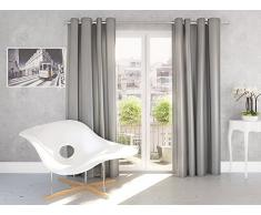Splendid SILK - Cortina de confección con ollaos (140 x 245 cm), color plateado