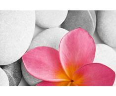 "60 x 40 cm poliéster papillón ""de flores/Zen"" muy absorbente alfombrilla de baño"
