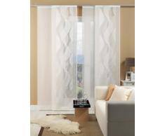 Deko Trends 8501 01 090 Caprice - Estor con riel de aluminio y barra de contrapeso, color blanco y gris (60 x 245 cm)